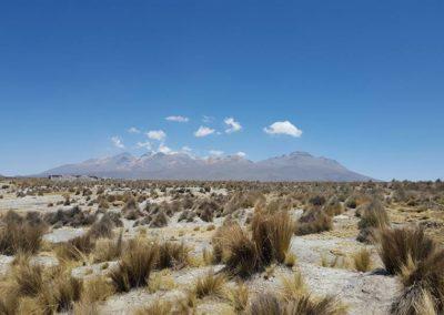 Peru Andok